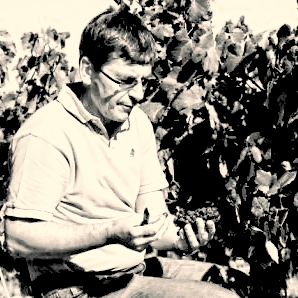 Pierre Clement in the vineyard